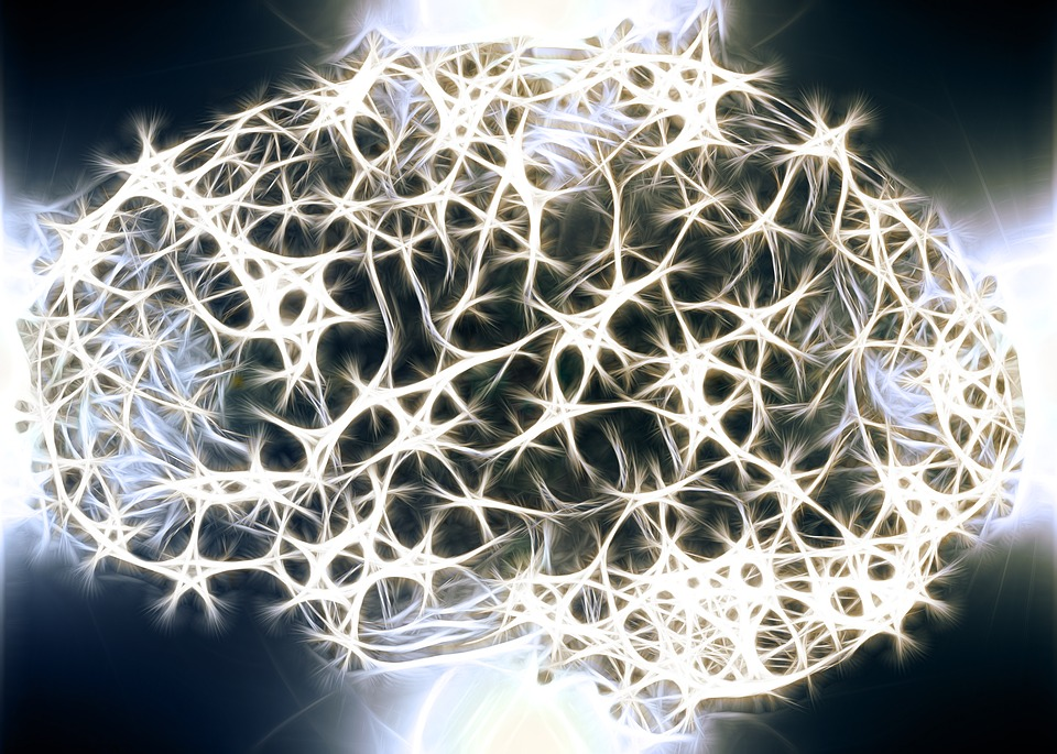 Rosemees-9-ans-de-recherche-dans-le-reseau-de-neurones-artificiels