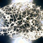 Rosemees 9 ans de recherche dans le reseau de neurones artificiels