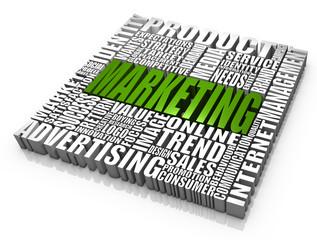 Les nouvelles stratégies du marketing vert