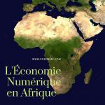 Les acteurs de l'économie numérique en Afrique