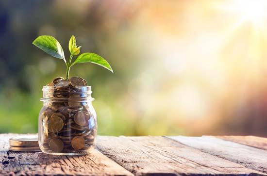 Le budget à prévoir pour réussir la transition écologique du numérique de son entreprise