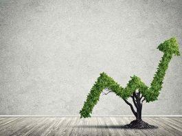 Eco-marketing, comment dépasser la stratégie de niche ?