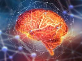 Elon Musk co-fondateur de Neuralink révèle l'interface cerveau-machine