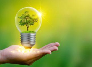 Transition écologique : quel avenir pour les startups ?