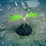 10 étapes pour assurer la transition écologique du numérique de son entreprise