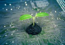 Quels sont les secteurs les plus ciblés par la transition écologique ?