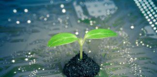 Les nouvelles solutions numériques pour préserver l'environnement