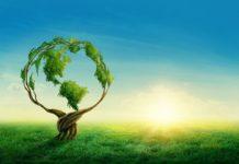 L'e-transformation adapté à la transition écologique du numérique