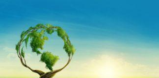 10 points qui caractérisent une entreprise éco-responsable