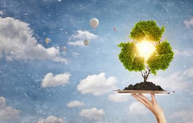 Comment créer un site web pour une entreprise éco-responsable ?
