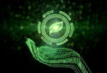 Informatique verte pour les PME