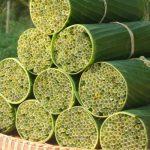 Des pailles biodégradables fabriquées avec de l'herbe sauvage.