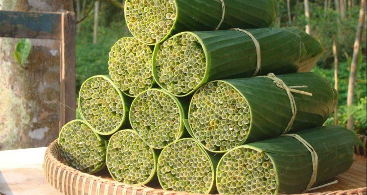 Des pailles biodégradables fabriquées avec de l'herbe sauvage