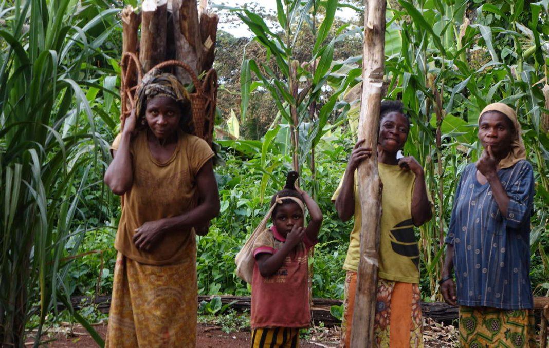 « Vous nous avez volé notre forêt » : un appel émouvant des Baka « pygmées » à la Commission européenne